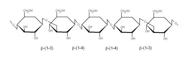 ukazka-struktury-β-glukanu-opt