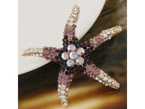 BR1104ZR morska hviezdica brosna fialova