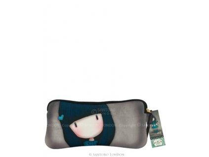 271gj01 accessory case