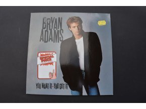BRYAN ADAMS - You Want It, You Got It / 1981