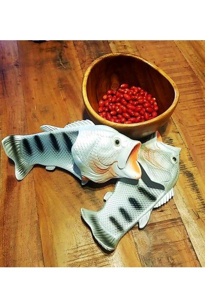 Ryba šlapky Strieborné