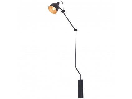 Aldex | 843C-1 | BIBI | čierna industriálna nástenná lampa