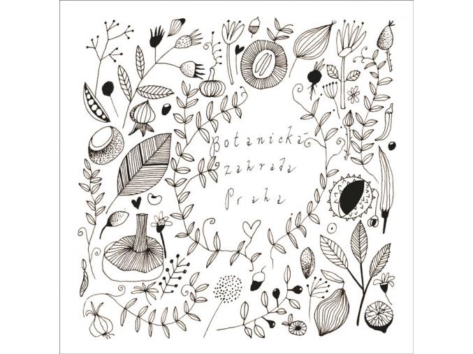 Botanická ornamenty web