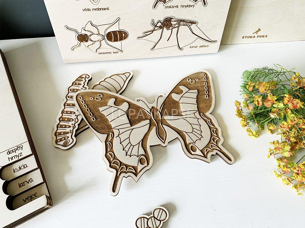 Otakárek fenyklový ❤️ Skládačka Motýl _ Stuka Puka _ Vzdělávací kreativní Montessori hračky ze dřeva pro děti od 2 let, od 3 let, od 4 let, od 5 let _ hračky pro školky a pro školy _ lupavkapse.cz