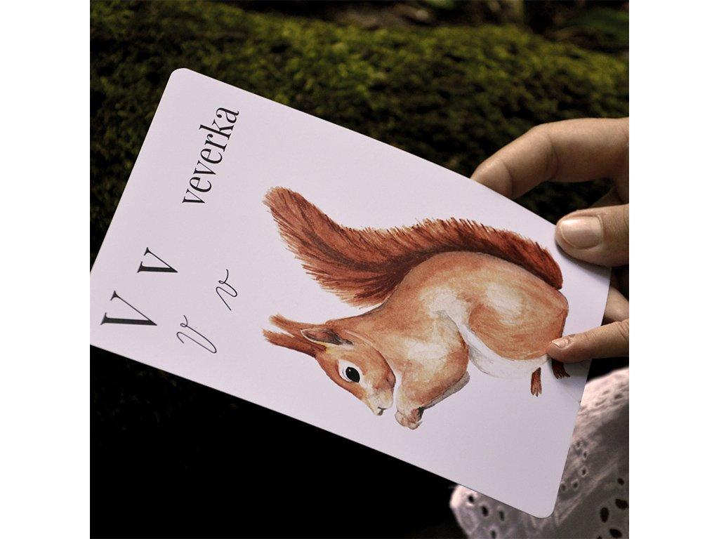 Česká přírodní abeceda ❤️ Sojkovie _ Nejprodávanější hračky pro děti od 3 let, od 4 let, od 5 let, do pokoje typu Montessori _ lupavkapse.cz