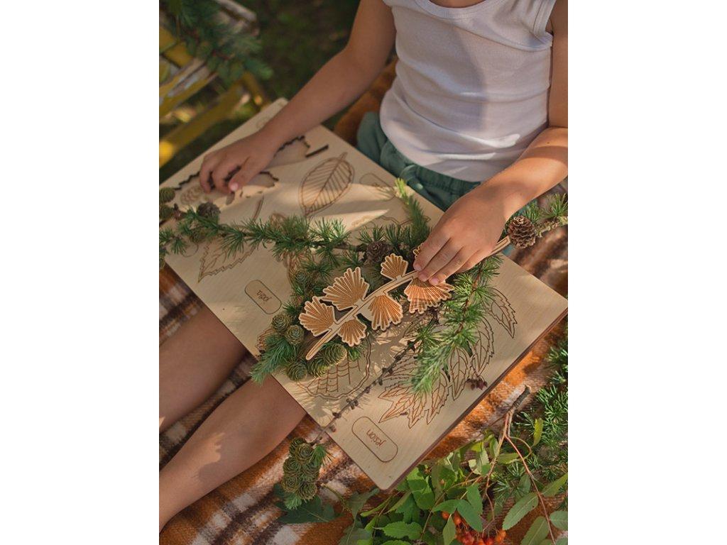 Vkládačka Listy ❤️ Co to spadlo ze stromu? _ Stuka Puka _ Kreativní hračky typu Montessori pro děti od 3 let, od 4 let, od 5 let _ lupavkapse.cz