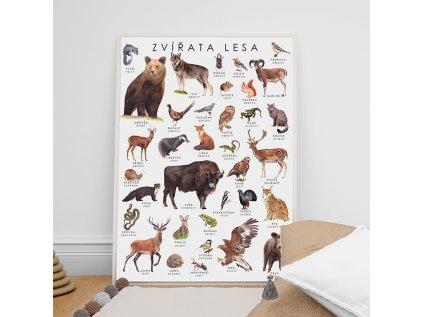 Kreativní plakát Zvířata lesa ❤️ Sojkovie _ Nejprodávanější kreativní dětská dekorace na zeď pro děti od 1 roku, od 2 let, od 3 let, od 4 let do dětského pokoje lesní zvířata _ lupavkapse.cz