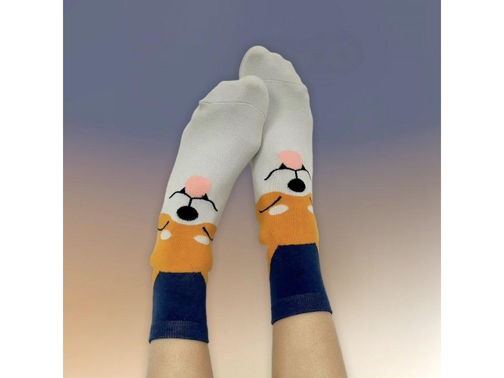 Veselé ponožky akita inu 2