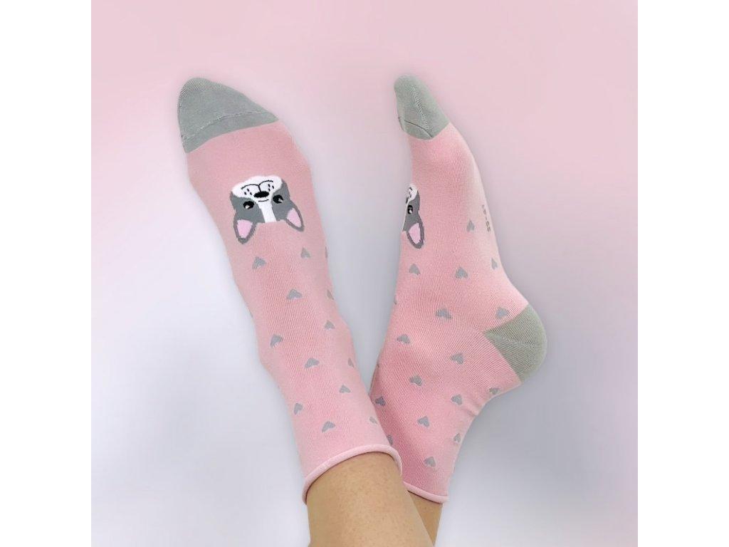 veselé ponožky růžový buldok 2