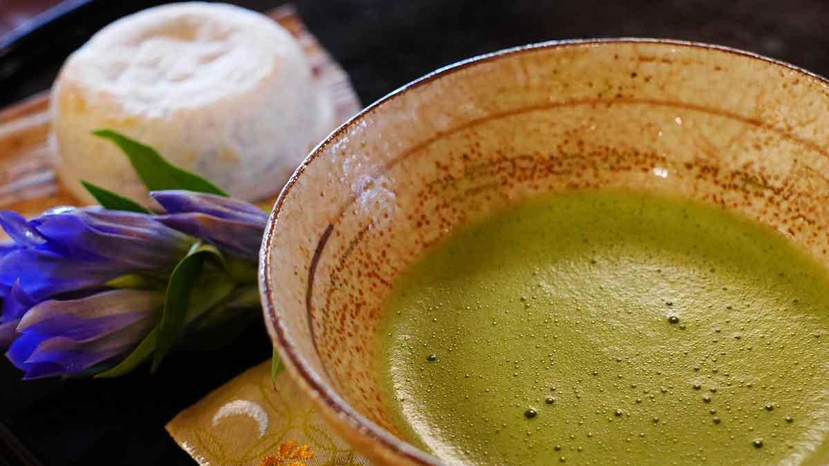 6 zelených potravín a superpotravín, ktoré by si mal zaradiť do svojho jedálnička