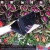Otvaracie puzdro Roybens Clear View pre iPhone, Samsung, Huawei, Xiaomi a Honor cierne luxria (5)