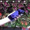 Otvaracie puzdro Roybens Clear View pre iPhone, Samsung, Huawei, Xiaomi a Honor fialove luxria (1)