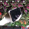 Otvaracie puzdro Roybens Clear View pre iPhone, Samsung, Huawei, Xiaomi a Honor zlate luxria (5)
