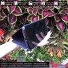 Otvaracie puzdro Roybens Clear View pre iPhone, Samsung, Huawei, Xiaomi a Honor fialove luxria (4)