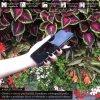 Otvaracie puzdro Roybens Clear View pre iPhone, Samsung, Huawei, Xiaomi a Honor cierne luxria (2)