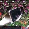 Otváracie Púzdro so tojanom Roybens Clear View pre Xiaomi zlate 6