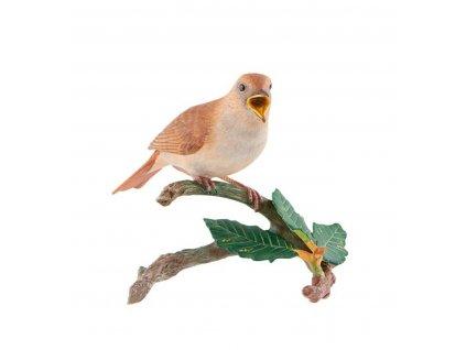 0041342 es aves portugal rouxinol