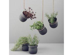 grow it pot lifestyle hanging flat small 800