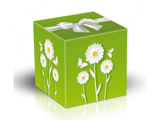 Viz Kostka 17 124 Zelena kvety motyli 220g M