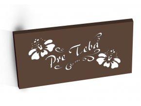 Hořká čokoláda 68% s kakaovými boby PRE TEBA hnědá 100g slovensky