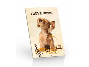 cok 20g I Love Music 3D leva