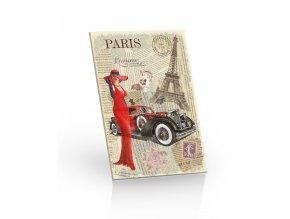 cok 20g PARIS 3D leva
