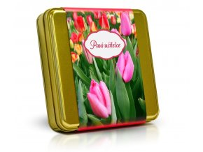 Plech PU Tulip M