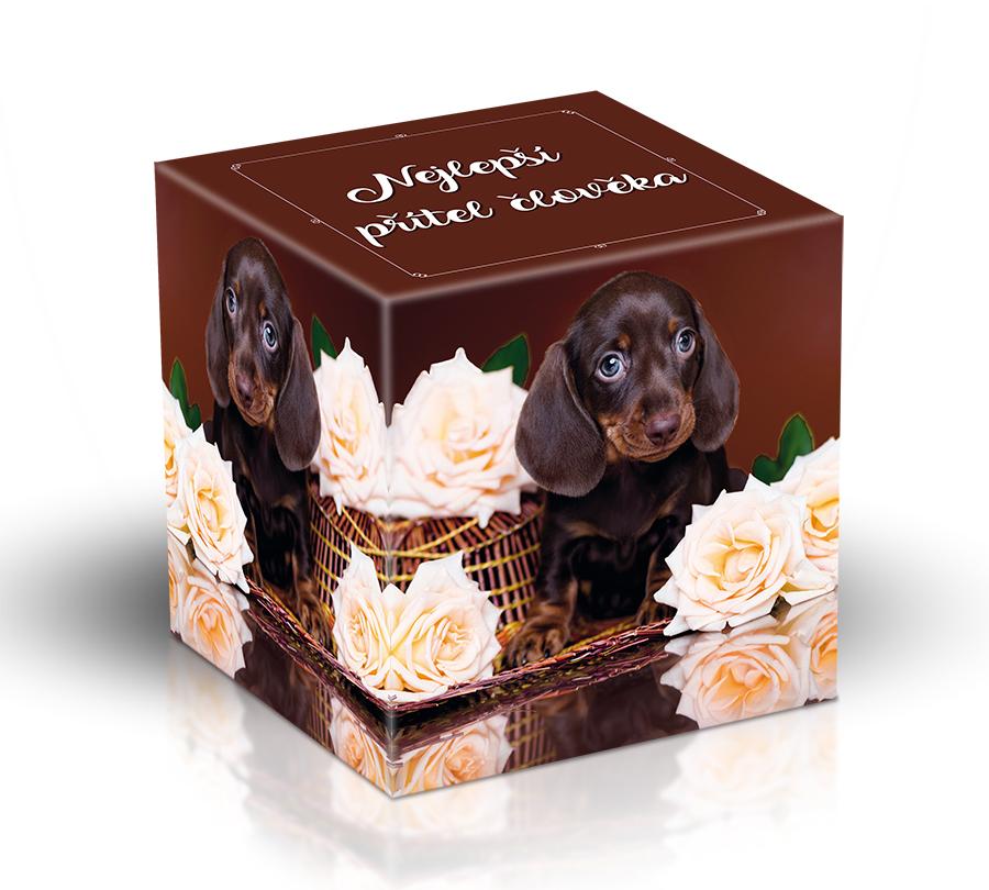 Vyrobeno v EU Čokoládové mléčné pralinky s mixem příchutí - Pes, nejlepší přítel člověka 220 g