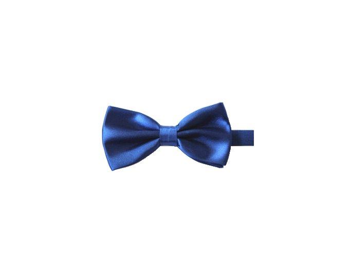 Motýlek modrý