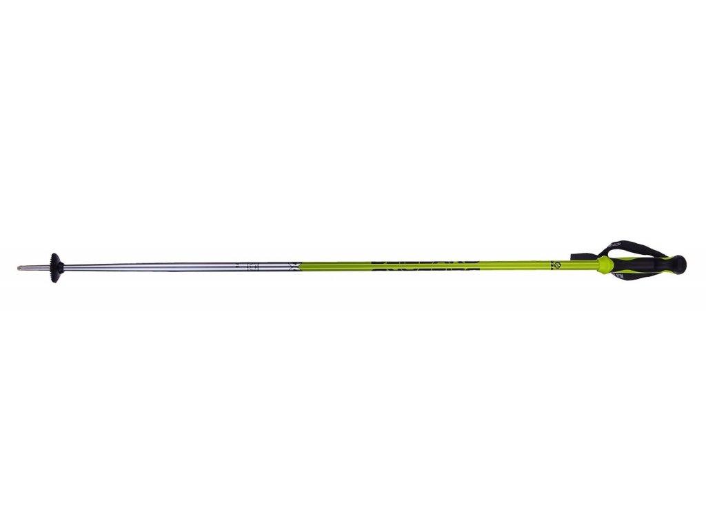 Lyžařské hůlky Blizzard ALLMOUNTAIN - silver/neon green 19/20