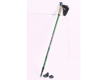 Haven NORDIC WALKING - green