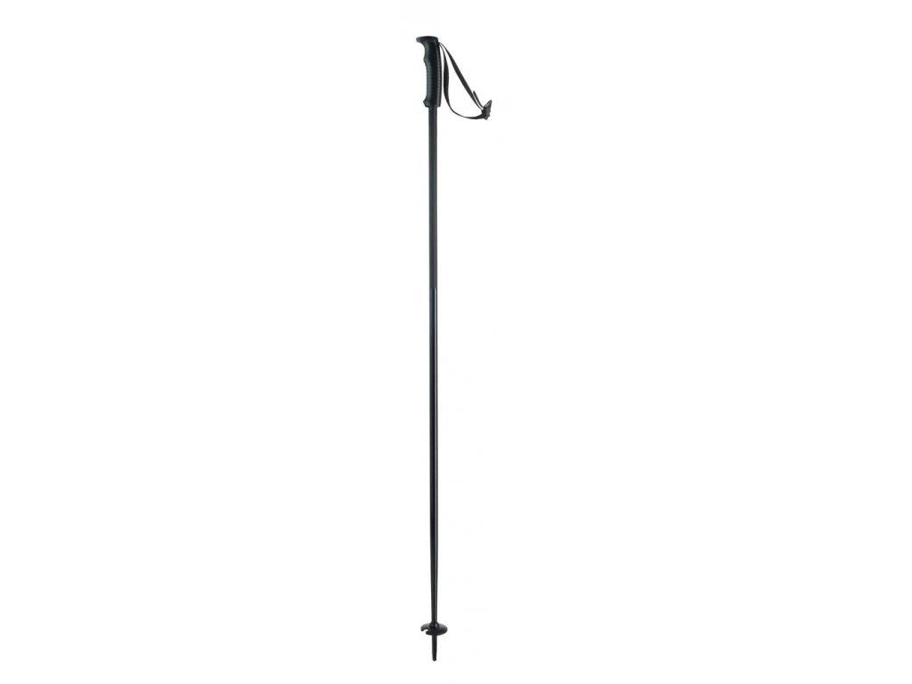 Lyžiarske palice Elan SPEEDROD Black 20/21 (dĺžka 120)