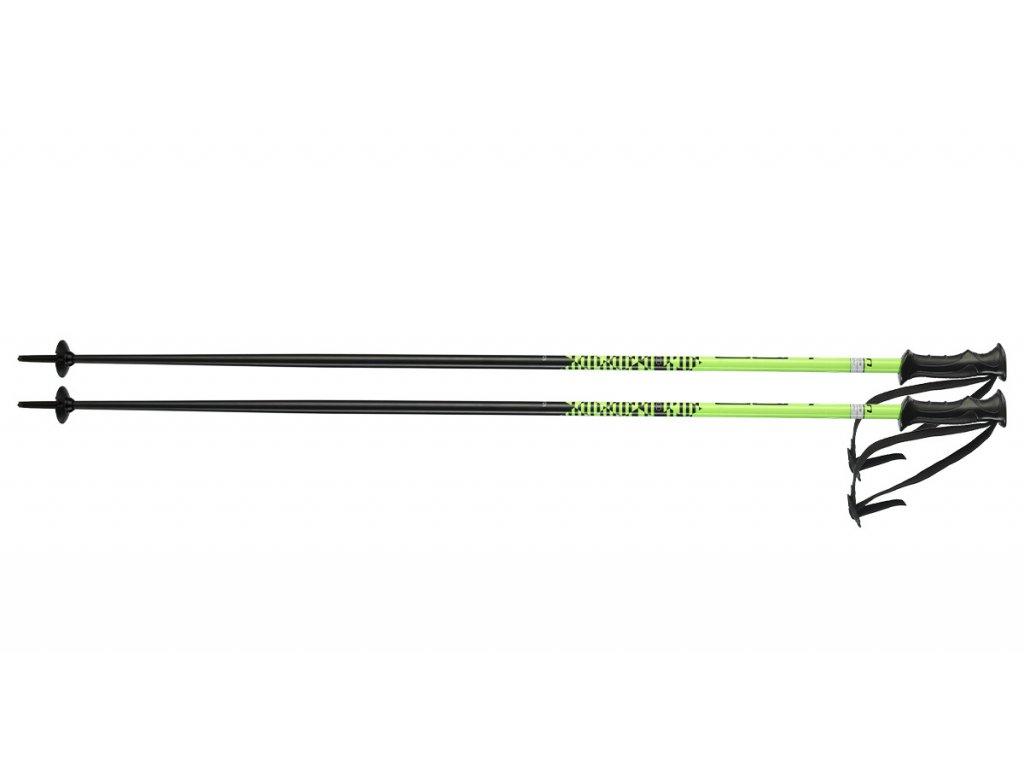 Lyžiarske palice Elan ROCKROD green (dĺžka 135)