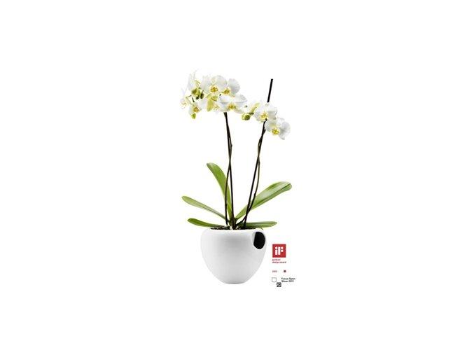 Eva solo - květináč na orchidej