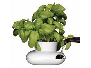 SAGAFORM - Květináč na bylinky Herb Pot malý