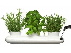 SAGAFORM - Květináč na bylinky Trio Herb Pot