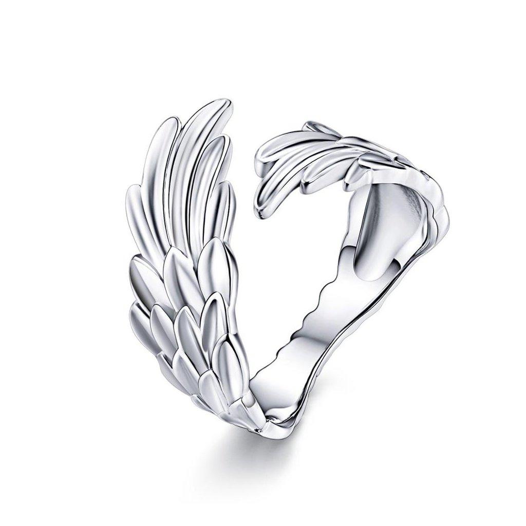 Dámsky strieborný prsteň DARCY 1
