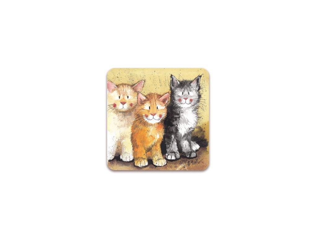 korková podložka pod hrnek kočka s kočkou kočičí Alex Clark