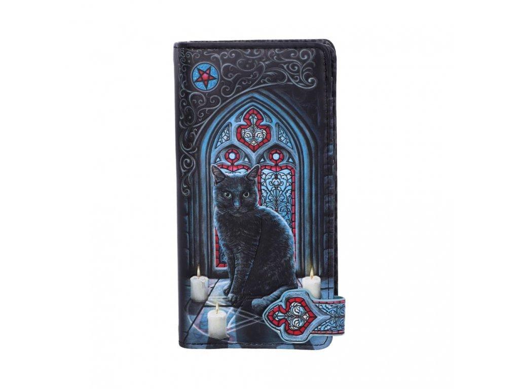 peněženka kočka s kočkou kočičí magická magie kouzelná lisa parker 6