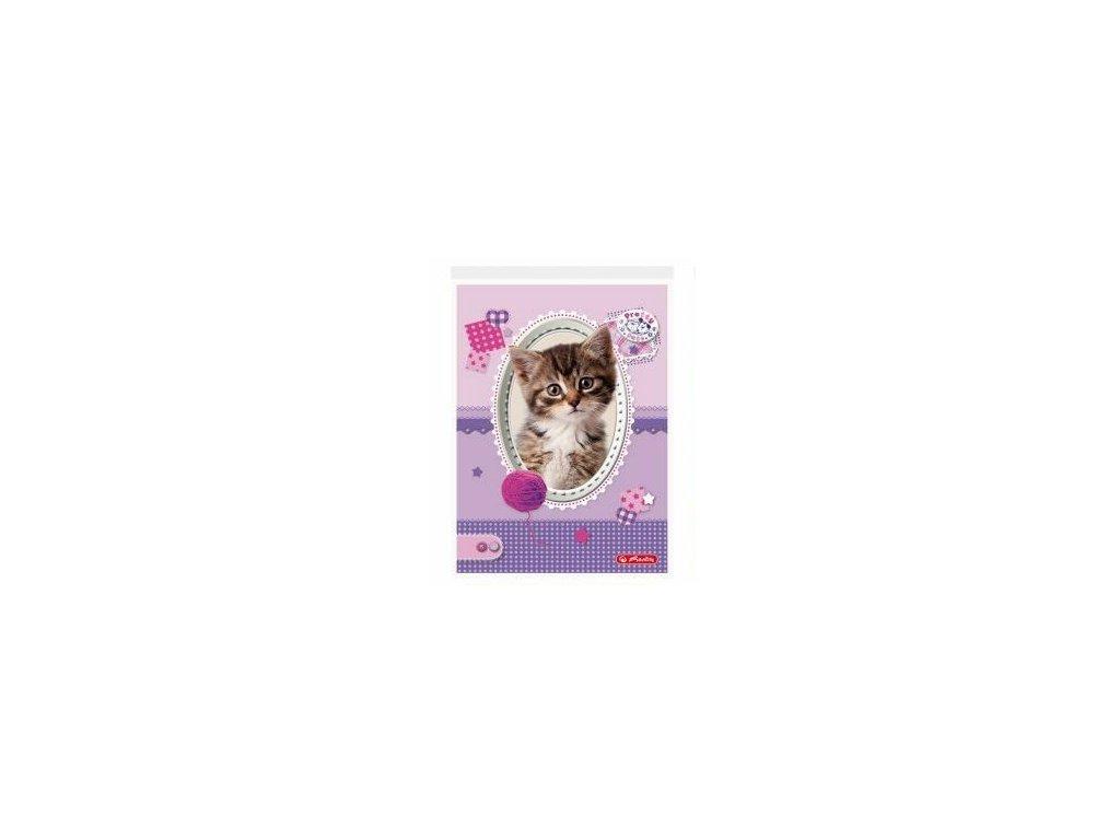 blok notýsek notes kočka s kočkou kočičí kotě