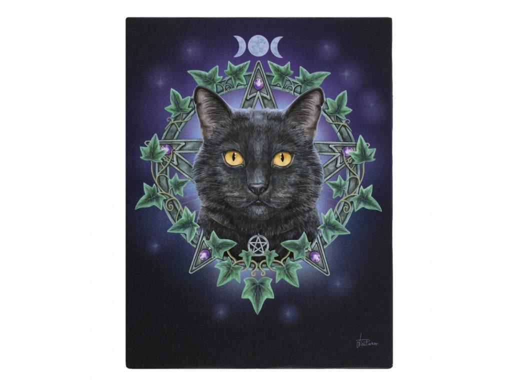 lisa parker obraz kočka s kočkou kočičí pentagram