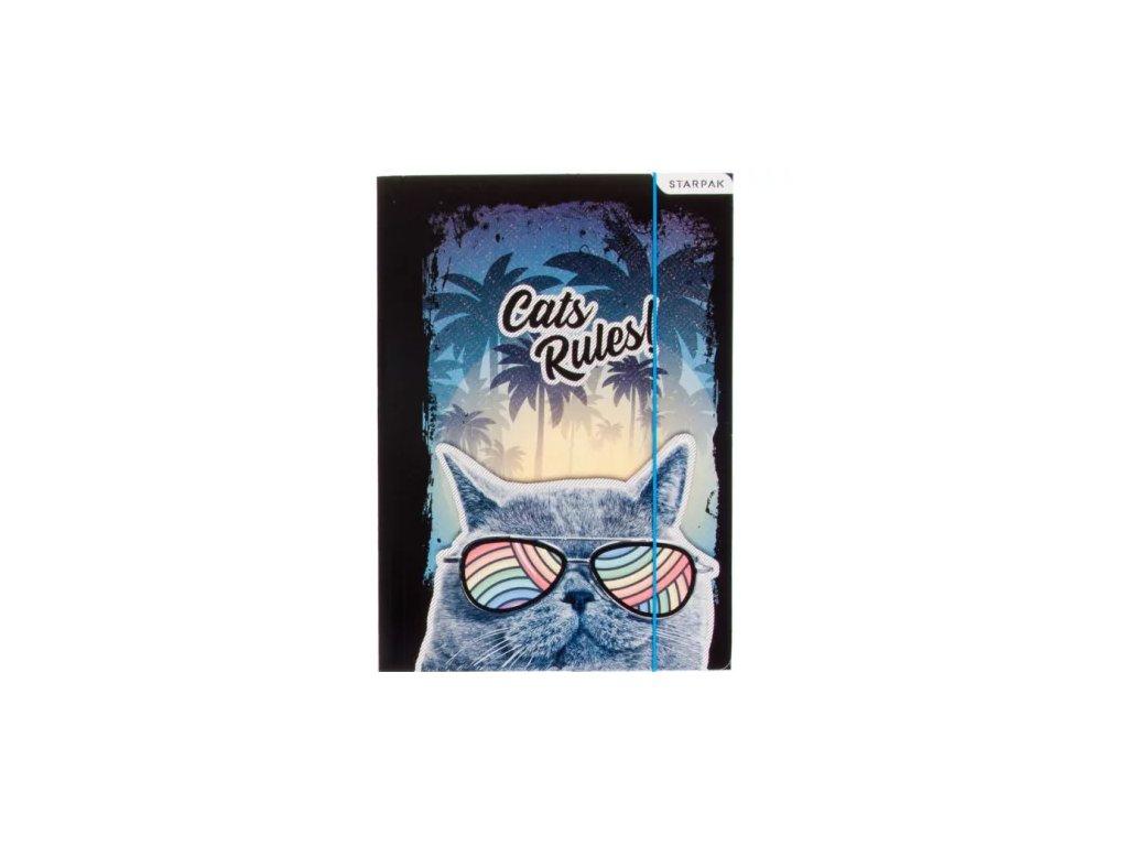 desky šanon kočka s kočkou kočičí brýle kocour