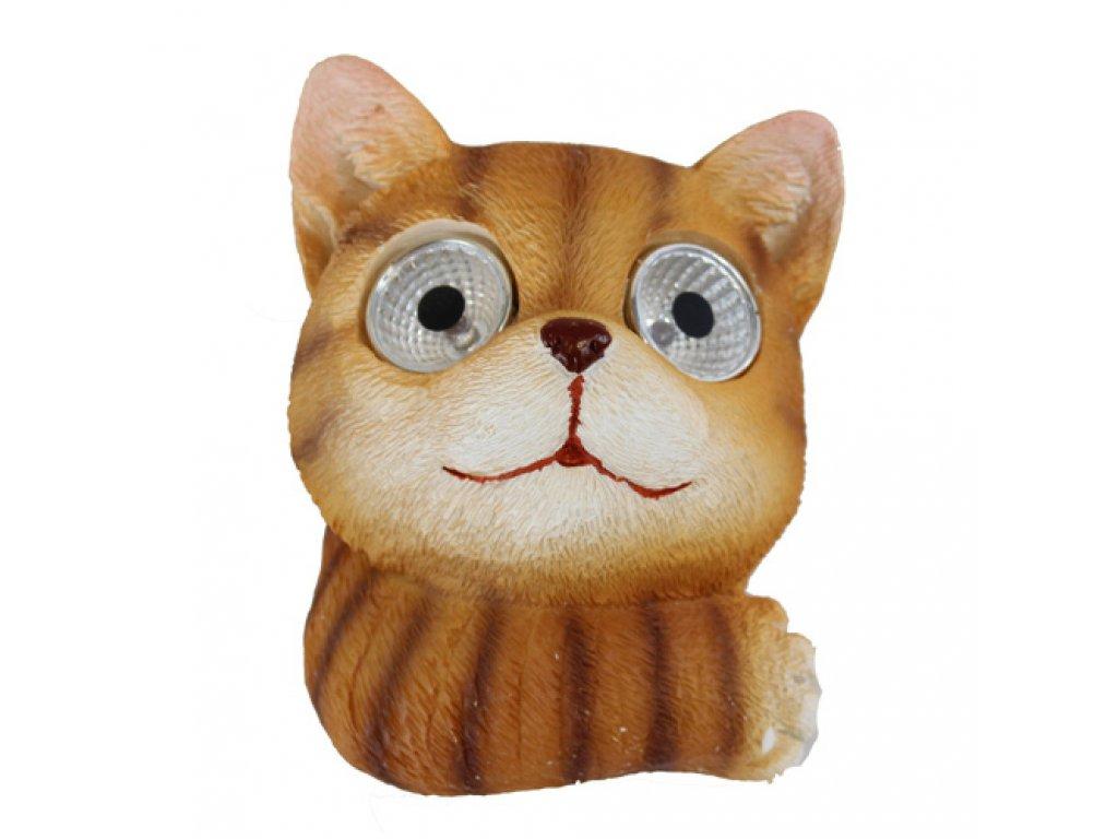 solární kočka s kočkou kočičí oči 2