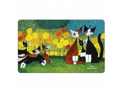 prkénko rosina wachtmeister kočka s kočkou kočičí