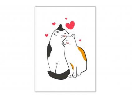 přání blahopřání kočka s kočkou kočičí zamilované kočky srdíčka 3