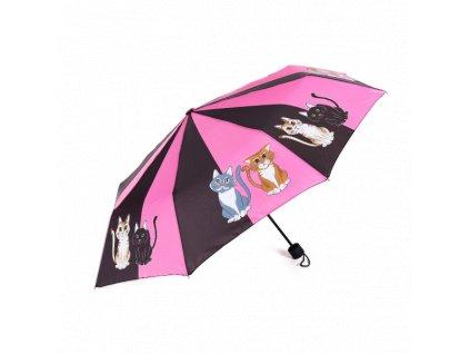 deštník kočka kočičí s kočkami 4