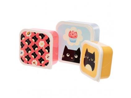 kočka krabičky oběd dvačina kočičí 2