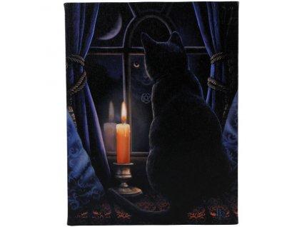 obraz kočka s kočkou kočičí plátno lisa parker