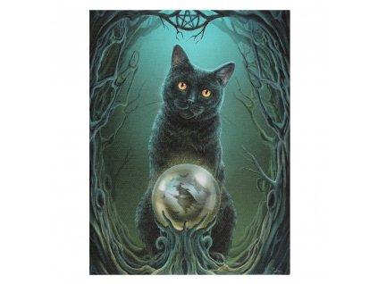 obraz kocour čarodějka kočka s kočkou kočičí lisa parker