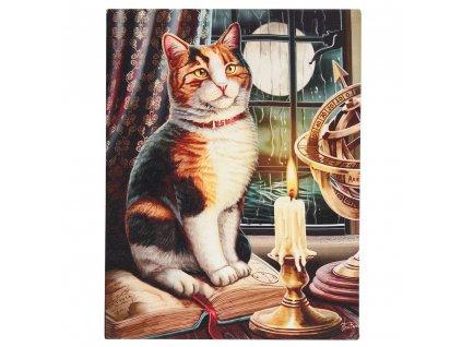 obraz kocou kočka s kočkou kočičí lisa parker